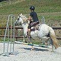 Jeux équestres manchots 2013 (285)