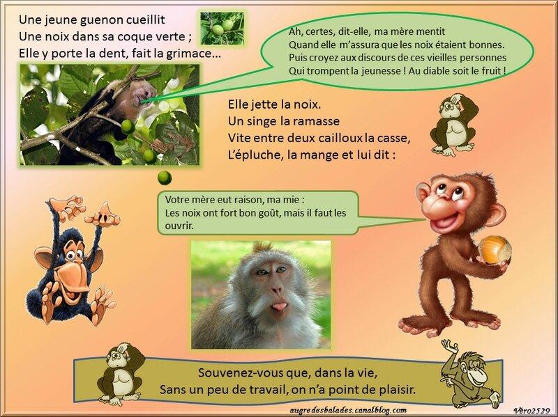 La guenon le singe et la noix jean pierre claris de - Le singe d aladdin ...
