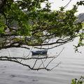 Barque au fil de l'eau