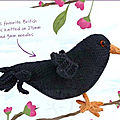 British birds - blackbird