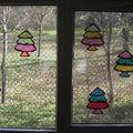 906-De beaux sapins sur nos fenêtres de classe.