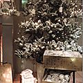 Windows-Live-Writer/Christmas-tree_1116B/DSCN3581_thumb
