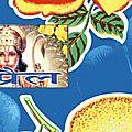 Indian Bazar (16)