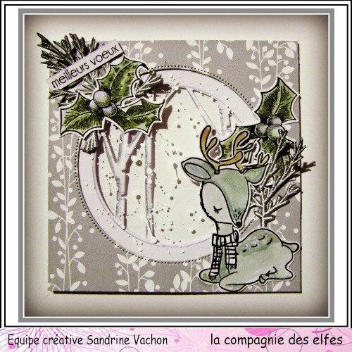 Carte hiver MEILLEURS VOEUX (1)