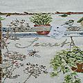 Secrets de jardin #6