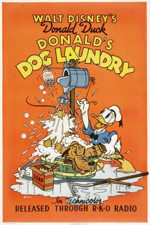 dog_laundry_us
