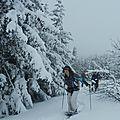 Raquette vercors - le moucherotte (lans en vercors)