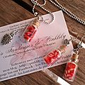 Ramène-ta-fraise, collier 12€, BO 10€