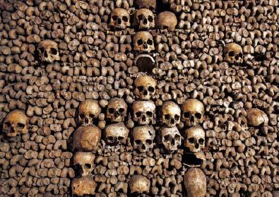 Empire-of-Death-Paris-Catacombs