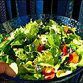 Salade colorée du jardin
