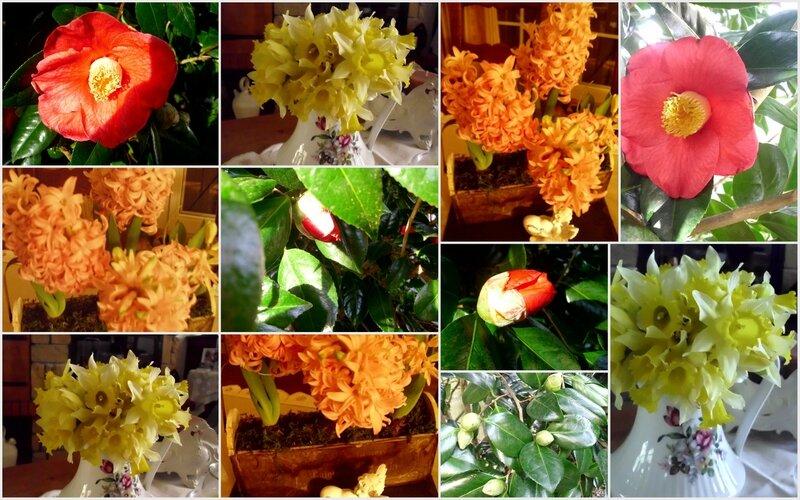 Fleurettes printanières