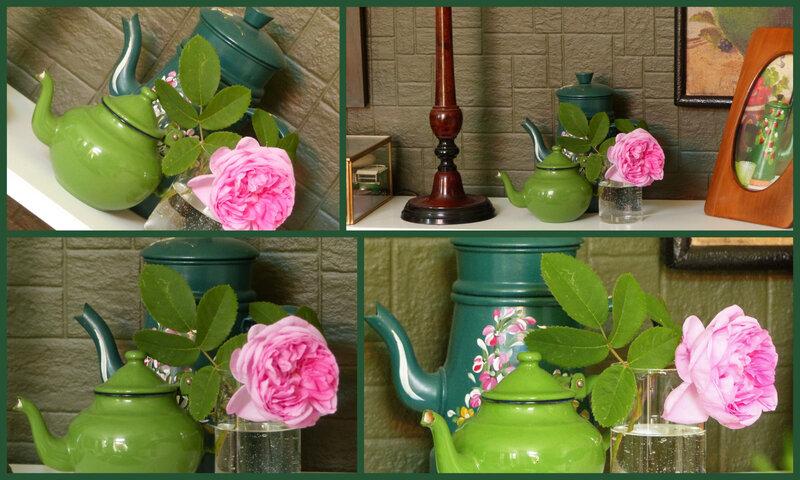 les fleurs viviane1