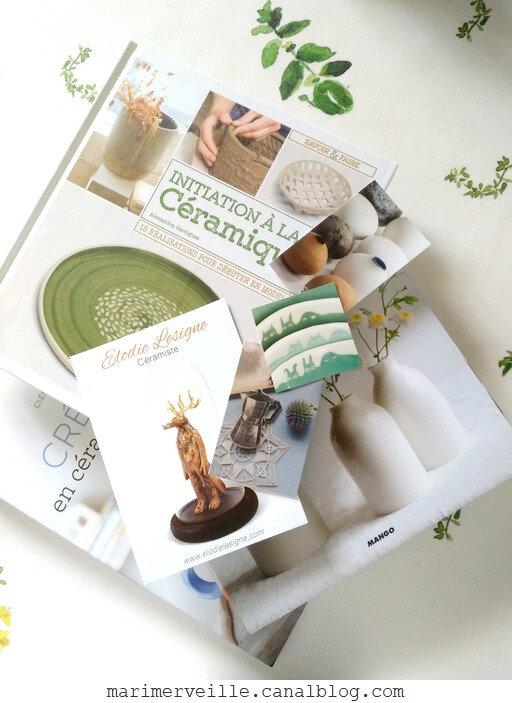 festival céramique mouffetard juin 2019 - livres d'éditeur - blog marimerveille