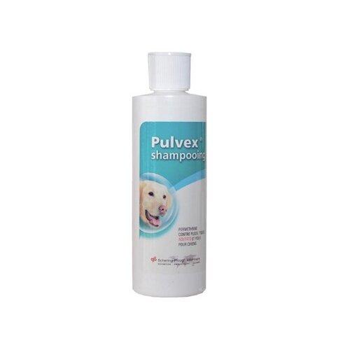 shampooing_pulvex