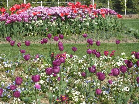 jardins_suspendus_041