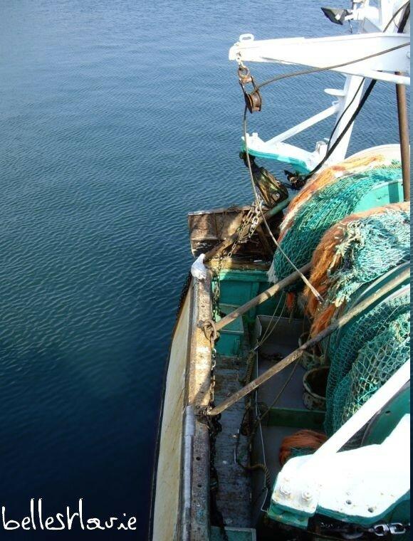 le port de guilvinec