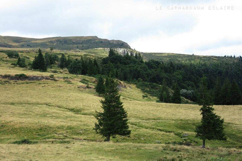 Col du Prat de Bouc 3