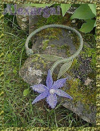 Collier_orchid_e1