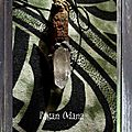 Mistletoe and Quartz Fairy wand for luck
