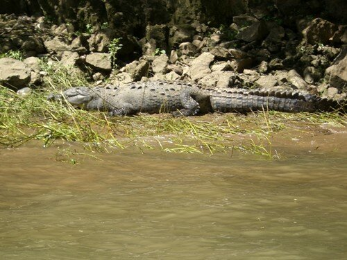 Sailing through a canyon near San Cristobal de Las Casas - Crocodile