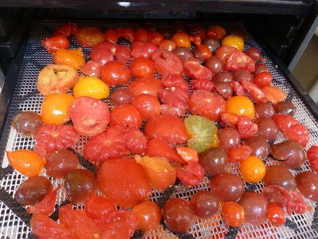 13-tomates à sécher (4)