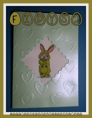 30 fidy52 BE_petit bunny_2