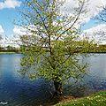 1-Lac de la Sablère et Peyrehorade ville, Hastingues 040417