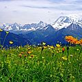 ALPES - Discover paintings on http://lodya.artgallery.free.fr
