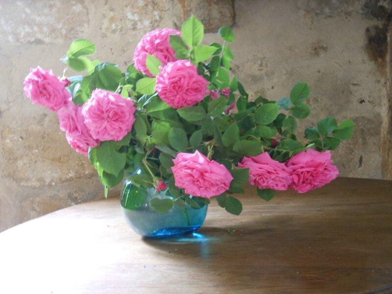 roses de marie