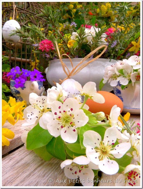 Pâques en fleurs (11)