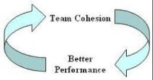 team cohesion better performance