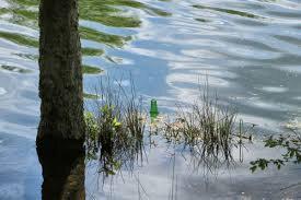 l'eau4