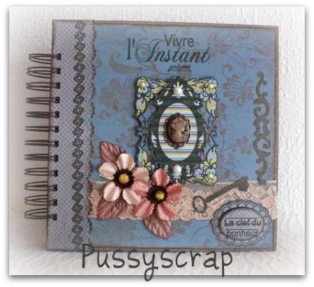 Mini_vintage_Pussyscrap_1