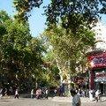 Rues de Mendoza (04)