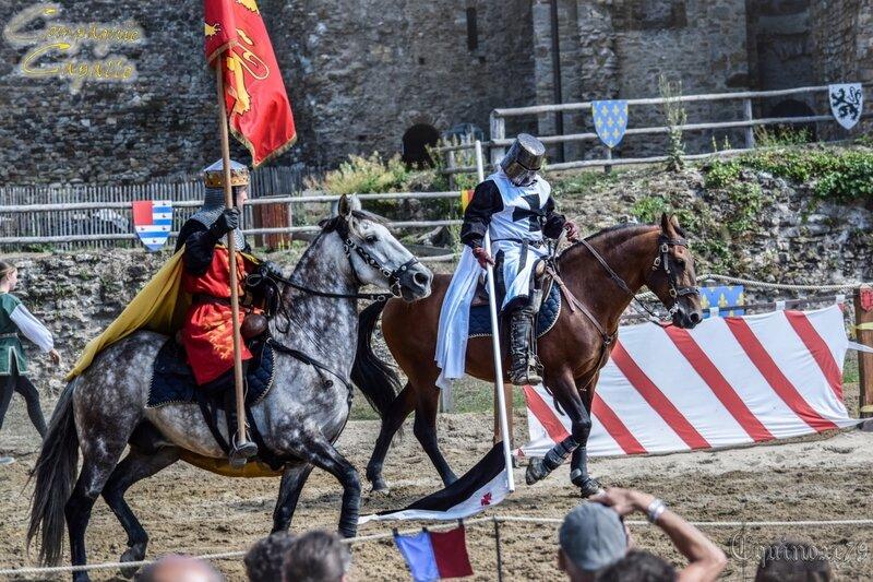 Chanson sur la mort du roi Richard Coeur de Lion Château Talmont