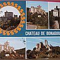 Bonaguil 2 - chateau