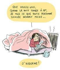dessin amusant hibernation