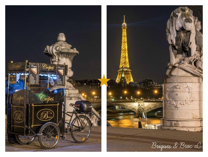 2015 01 14 - Pont Alexandre III 1