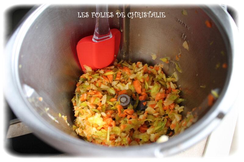 Samoussas légumes 2