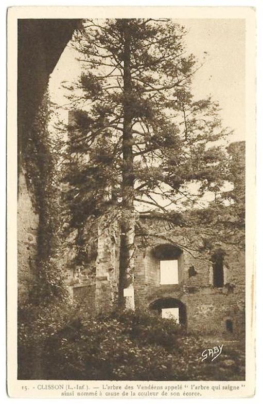 CPA Clisson Arbre des Vendéens 2