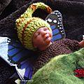 AA-argawaen (butterfly ) adopté -adopted