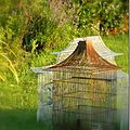 Windows-Live-Writer/Jardin_10232/DSCN0790_thumb