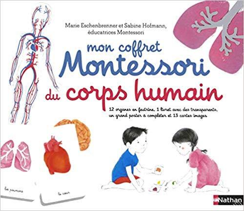 Mon coffret Montessori du corps humain