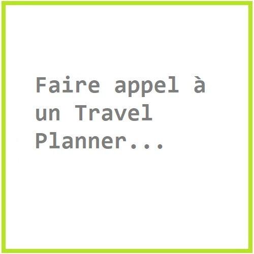 faire appel à un travel planner