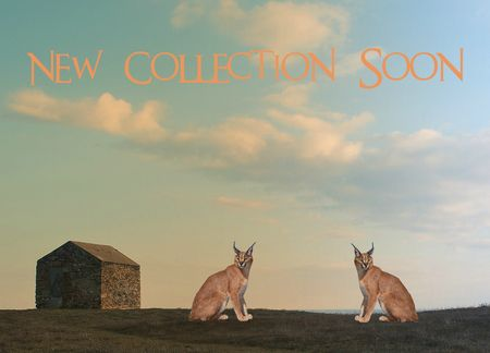 New-collection-soon-11