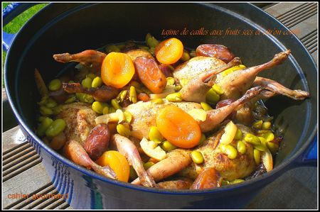 tajine_caille_fruits