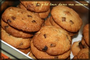 Cookies__rable_p_can_choco_lait2