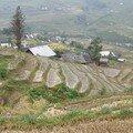 Les paysages de Sapa