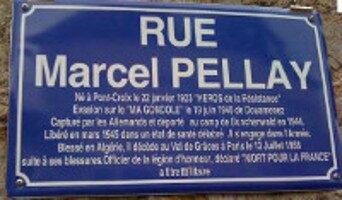 PELLAY Marcel 1