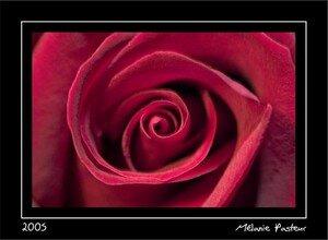 melanie_rose